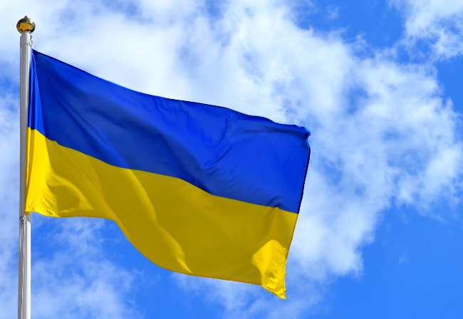 Designing ancillary service tariff methodology in Ukraine
