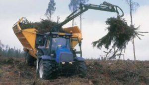 tractor clearing pine tree belarus