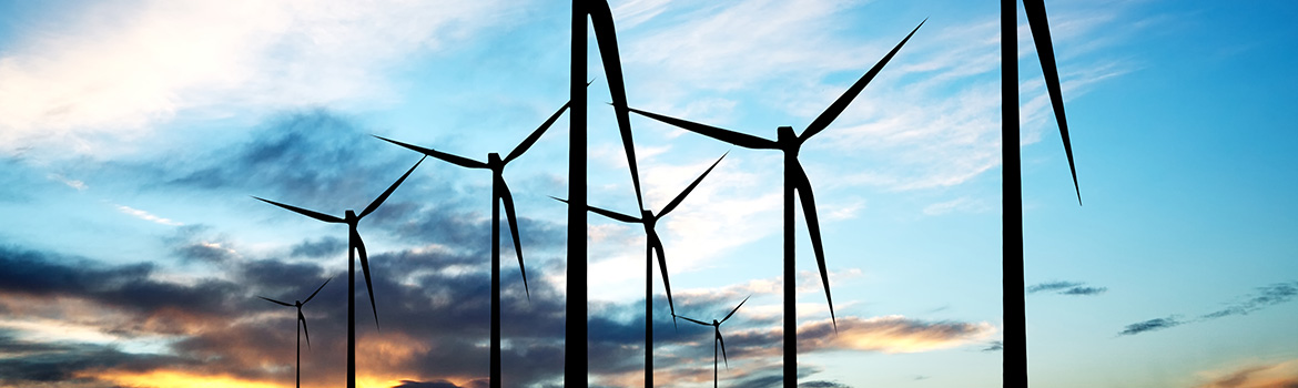Advice on renewables and Energy Efficiency from Economic Consulting Associates