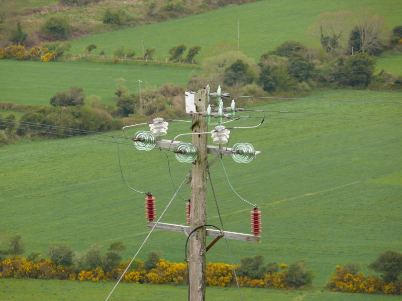 ECA to advise Northern Ireland's Consumer Council on electricity price controls