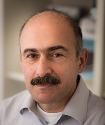 Image of Alexis Pramagioulis, Managing Consultant at ECA
