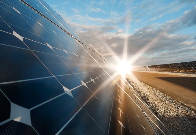 power plant solar panel close-up - with sun blazing on horizon