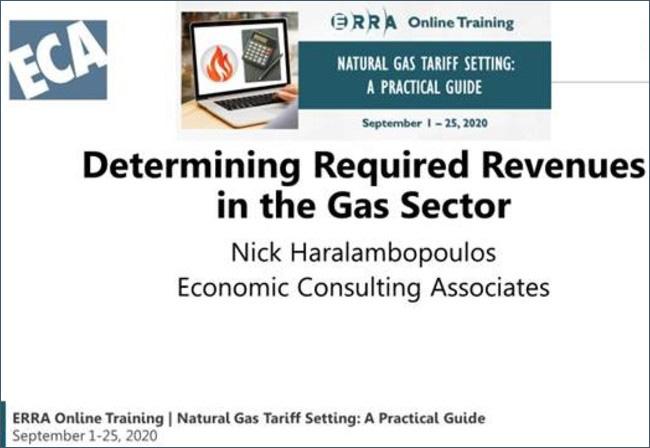 ECA Director delivering tariff training to regulatory staff in ERRA member organisations
