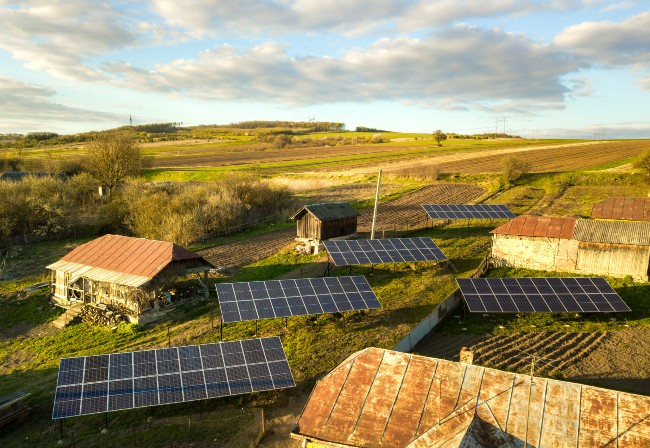Low carbon development and affordable energy access are complementary objectives (to a point)